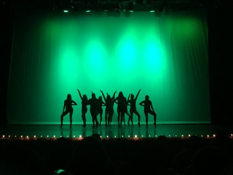 Winter Dance Show: Destinations