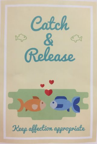 Catch and Release: PBIS