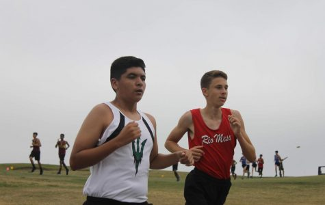 Cross Country Runs Towards Their Goals