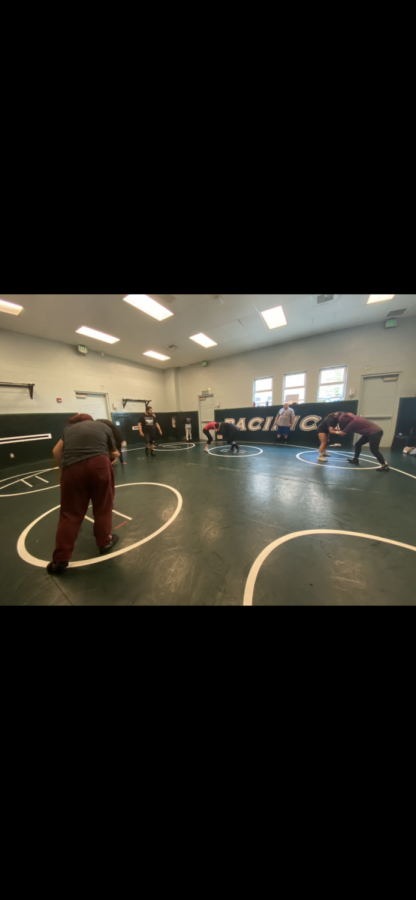 Girls Wrestling During Covid